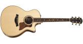 Taylor Guitars - Auditorium Spruce/RW Acoustic/Electric Guitar w/Case
