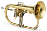XO Professional Brass - 1646L Professional Flugelhorn - Yellow Brass Bell -  Lacquer Finish