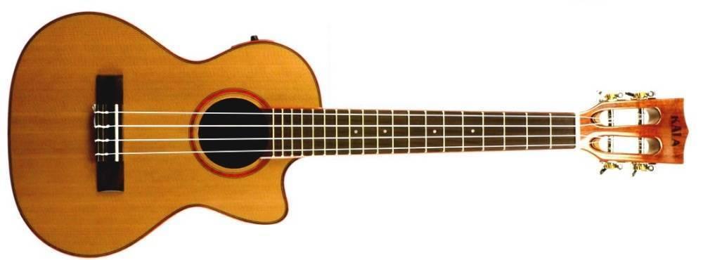 kala solid cedar acacia tenor gloss acoustic electric ukulele long mcquade musical instruments. Black Bedroom Furniture Sets. Home Design Ideas