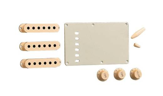 Stratocaster Accessory Kit - Aged White