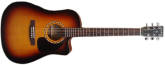 - Songsmith with Cutaway and A3T Pickup - Burst