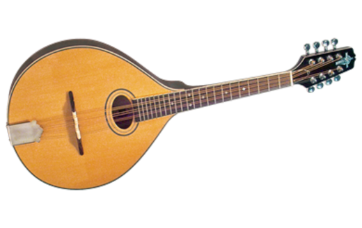 Octave Mandolin - Solid Spruce Maple