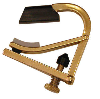 Partial Capo Brass
