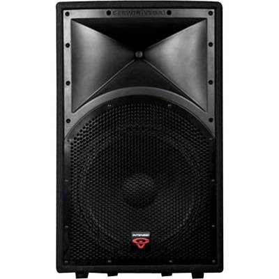Intense Series 15 Inch 2 Way Full Range Speaker