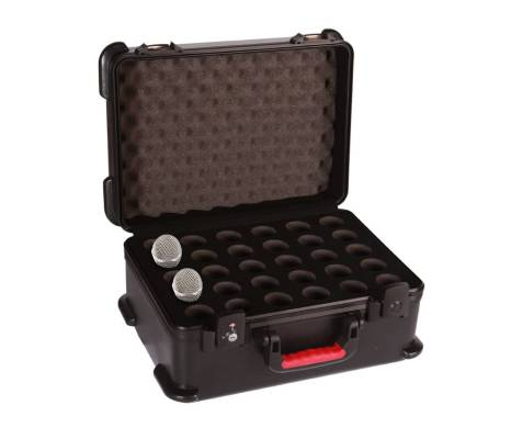 ATA Molded Case w/ Drops for 30 Mics; TSA Latches