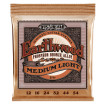 Ernie Ball - Earthwood Medium Light Phosphor Bronze Acoustic Guitar Strings