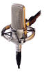 Audio-Technica - AT4047/SV - Cardioid Condenser Microphone
