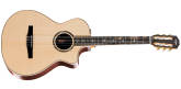 Taylor Guitars - Concert Nylon Spruce/Rosewood Acoustic/Electric Guitar w/ Cutaway and Case