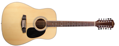 12 String Steel Acoustic - Natural