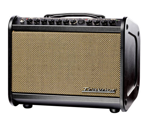 65 Watt Acoustic Amp w/Effects