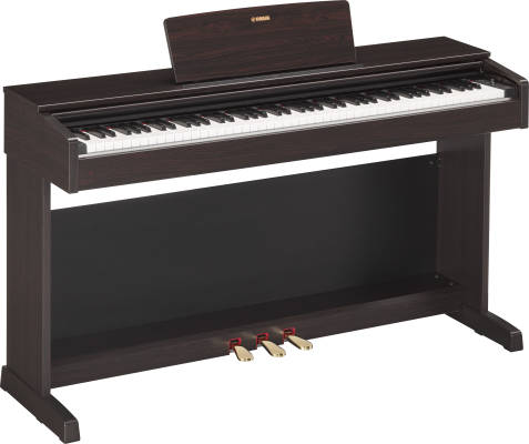 Arius Digital Piano w/Bench - Rosewood