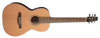 Seagull Guitars - Coastline Grand Acoustic/Electric Guitar w/ QIT Electronics