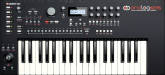Elektron - Analog Keys - Analog 37 Key Synthesizer