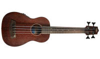 U-Bass - Rumbler Fretless Acoustic-Electric U-BASS with Bag