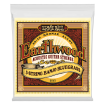 Ernie Ball - Earthwood 5-String Banjo Bluegrass Loop End 80/20 Bronze Strings