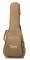 Baby Taylor-e Sitka/Layered Sapele Acoustic-Electric Guitar with Gigbag