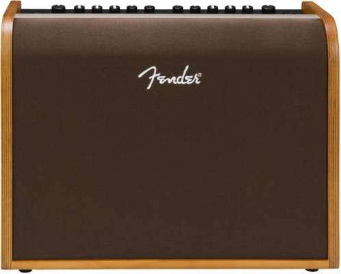 Acoustic 100 Portable Guitar Amp