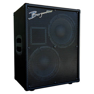 Reference 210  2x10 8 Ohm Bass Cabinet