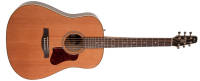 Seagull Guitars - Coastline Momentum Acoustic/Electric Guitar - Gloss Finish