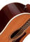 Coastline Momentum Acoustic/Electric Guitar - Gloss Finish