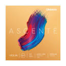 DAddario Orchestral - Ascente Violin String Set, 1/2 Scale, Medium Tension