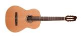 La Patrie Guitars - Etude Nylon String Guitar w/QIT Pickup