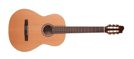 Etude Nylon String Guitar w/QIT Pickup