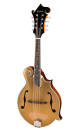 Eastman Guitars - Goldtop F-Style Mandolin Spruce/Mahogany w/Case