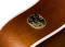 Entourage Cutaway Acoustic Guitar with QIT - Autumn Burst