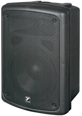 Coliseum Series Compact Powered Speaker - 8 inch Woofer - 100 Watts