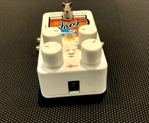 Store Special Product - (USED) Canyon Delay and Looper Pedal