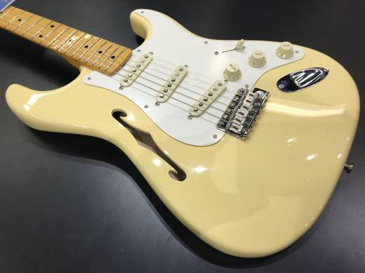 Fender Eric Johnson Thinline Stratocaster - Vintage White
