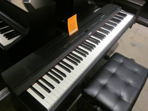 P255 Portable Digital Piano