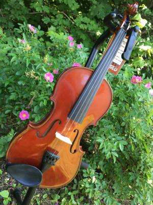 Student II Viola Outfit 14 Inch