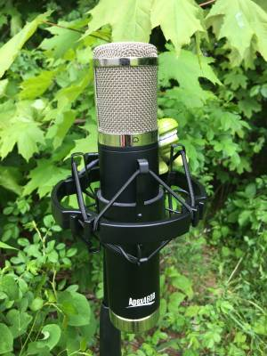 460B Multipattern Tube Condenser Microphone