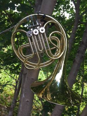Standard - French Horn - Single Horn - Clear Lacquer