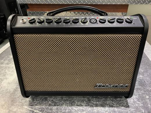Traynor AMMINI 65 Watt Acoustic Amp w/Effects