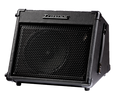 Special Traynor Travelmate 15 Watt Battery Amp