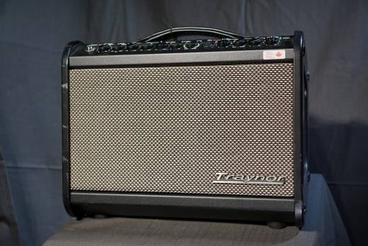 Store Special Product - 65 Watt Acoustic Amp w/Effects