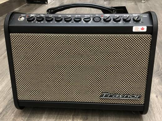 Traynor 65 Watt Acoustic Amp w/Effects
