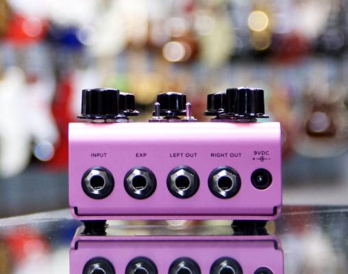 Store Special Product - Strymon - DIG