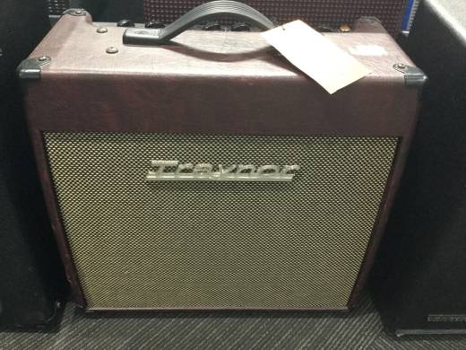 Store Special Product - Traynor 15 Watt All-Tube 1x12 Guitar Combo