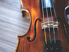 Adult Group Violin Lessons